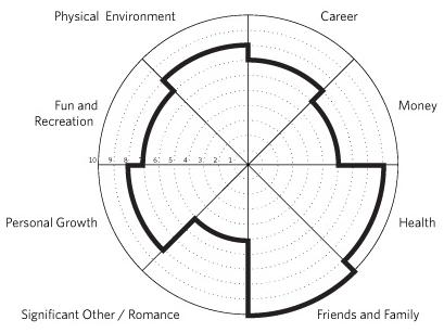 wheel of life sample adhd